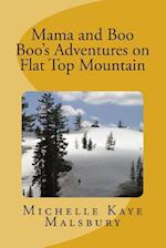 Mama and Boo Boo's Adventures on Flat Top Mountain