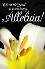 Christ the Lord Easter Lilies Bulletin (Pkg of 50)