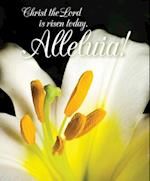 Christ the Lord Easter Lilies Bulletin, Large (Pkg of 50)