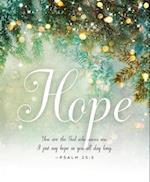 Hope Image Advent Bulletin, Large (Pkg of 50)