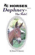Daphney-The Mule