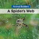 A Spider's Web (Animal Builders)