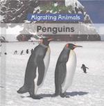 Penguins (Migrating Animals)