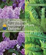 Flowering and Nonflowering Plants Explained (Distinctions in Nature)
