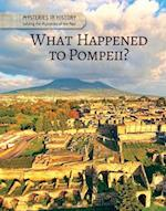 What Happened to Pompeii? (Mysteries in History Solving the Mysteries of the Past)