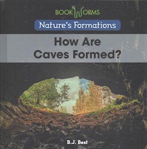 Bog, hardback Nature's Formations Set af B. J. Best