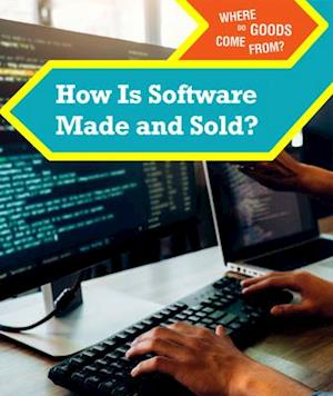 How Is Software Made and Sold?