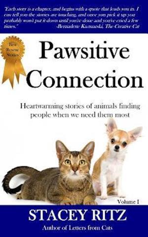Bog, paperback Pawsitive Connection af Stacey Ritz