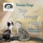 Tojo Meets Nelly