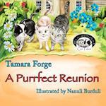 A Purrfect Reunion
