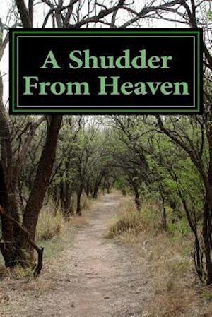 Bog, paperback A Shudder from Heaven af Danny Kemp
