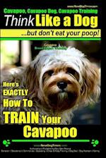 Cavapoo, Cavapoo Dog, Cavapoo Training Think Like a Dog But Don't Eat Your Poop! Cavapoo Breed Expert Training af MR Paul Allen Pearce