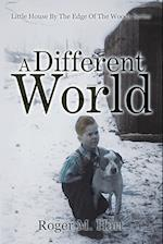 A Different World: Little House by the Edge of the Woods, Series