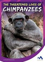 The Threatened Lives of Chimpanzees (Stories from the Wild Animal Kingdom)