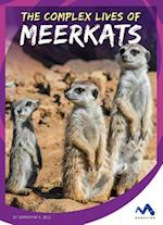 The Complex Lives of Meerkats (Stories from the Wild Animal Kingdom)