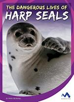 The Dangerous Lives of Harp Seals (Stories from the Wild Animal Kingdom)