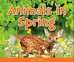 Animals in Spring (Welcome Spring)