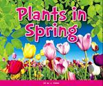 Plants in Spring (Welcome Spring)