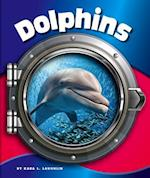 Dolphins (In the Deep Blue Sea)