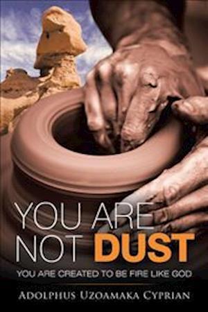 Bog, paperback You Are Not Dust af Adolphus Uzoamaka Cyprian