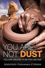 You Are Not Dust