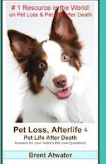 Pet Loss, Afterlife & Pet Life After Death