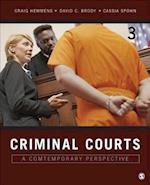 Criminal Courts af Craig T. Hemmens