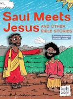 Saul Meets Jesus and Other Bible Stories (Holy Moly Bible Storybooks)