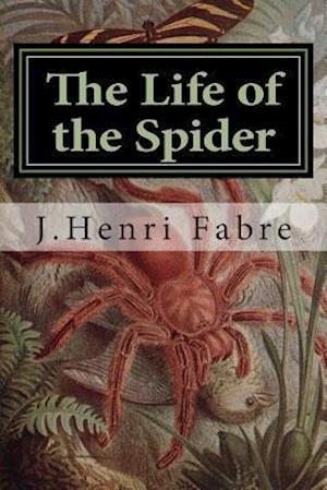 Bog, paperback The Life of the Spider af J. Henri Fabre