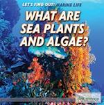 What Are Sea Plants and Algae? af Lynnae D. Steinberg