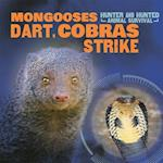 Mongooses Dart, Cobras Strike (Hunter and Hunted Animal Survival)
