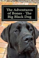 The Adventures of Bones - The Big Black Dog