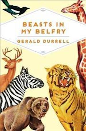 Bog, paperback Beasts in My Belfry af Gerald Durrell