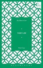 Key Ideas in Tort Law (Key Ideas in Law)