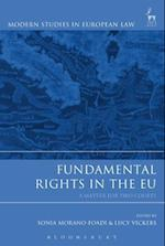Fundamental Rights in the EU (Modern Studies In European Law)