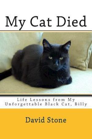 My Cat Died