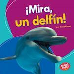 Mira, Un Delfin! (Look, a Dolphin!) (Bumba Books en Espanol Veo Animales Marinos I See Ocean Ani)