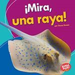 Mira, Una Raya! (Look, a Ray!) (Bumba Books en Espanol Veo Animales Marinos I See Ocean Ani)