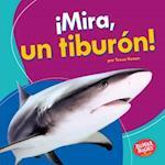 Mira, Un Tiburaon!