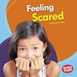 Feeling Scared (Bumba Books Feelings Matter)