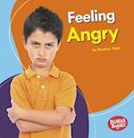 Feeling Angry (Bumba Books Feelings Matter)