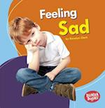 Feeling Sad (Bumba Books Feelings Matter)
