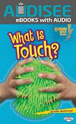 What Is Touch? (Lightning Bolt Books TM Your Amazing Senses)