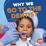 Why We Go to the Dentist (Bumba Books Health Matters)