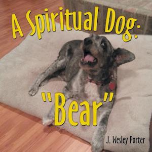 """A Spiritual Dog: """"Bear"""""""