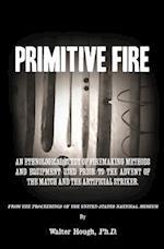 Primitive Fire