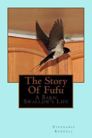 Bog, paperback The Story of Fufu af Stephanie Kendall