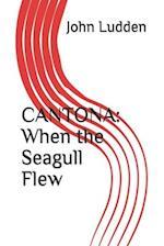 Cantona af John Ludden