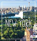 New York af Tyler Maine