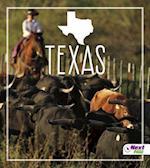 Texas af Bridget Parker